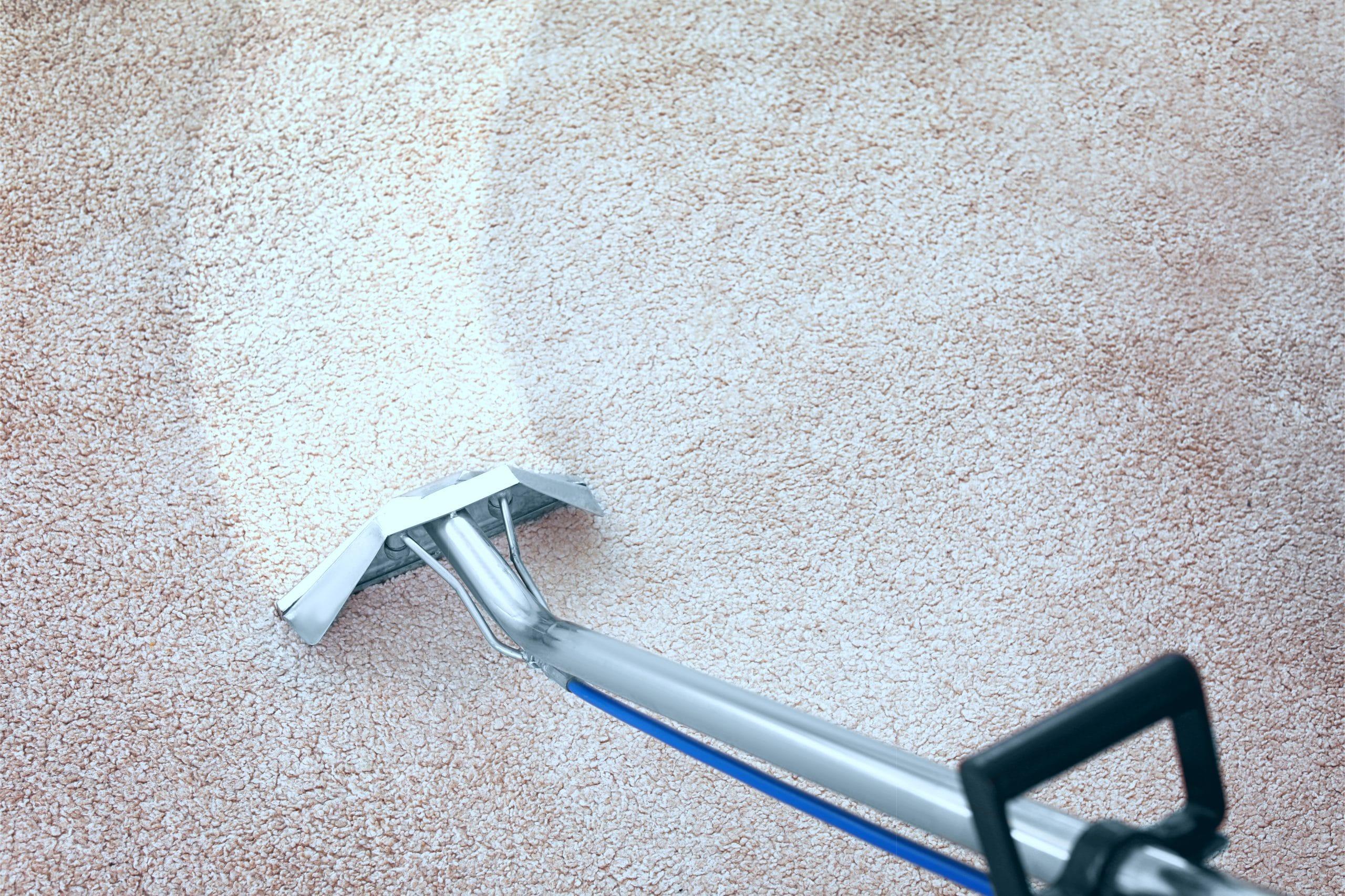 société de nettoyage de tapis